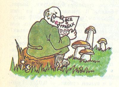 защита грибов паразитов в организме человека